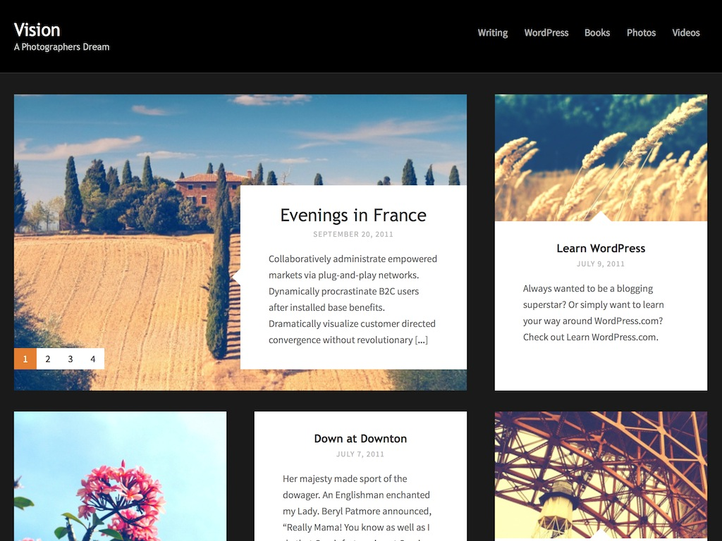 Vision WordPress Theme